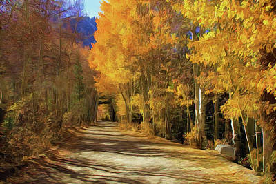 Photograph - Autumn Walk At June Lake by Donna Kennedy