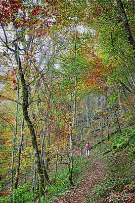 Photograph - Autumn Walk by David A Lane