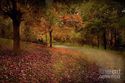 Art Print featuring the photograph Autumn Walk by Elaine Manley