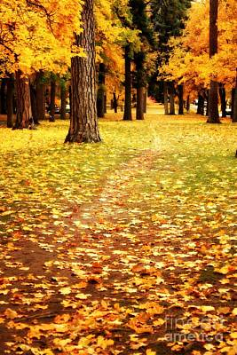 Photograph - Autumn Walk In Spokane by Carol Groenen
