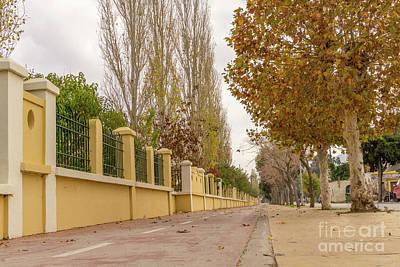 Photograph - Autumn Walk by Konstantinos Chatziamallos