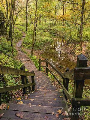 Photograph - Autumn Walk Maquoketa Caves by Tamara Becker