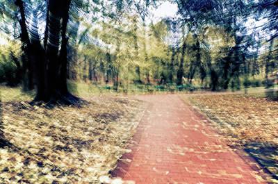 Photograph - Autumn Walks by Tetyana Kokhanets
