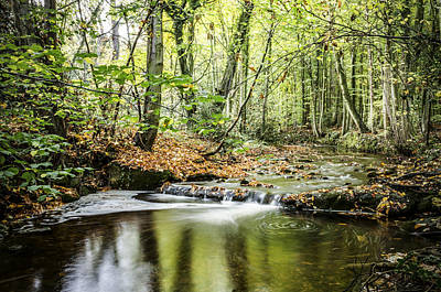 Photograph - Autumn Water Way At Offas Dyke  by Spikey Mouse Photography