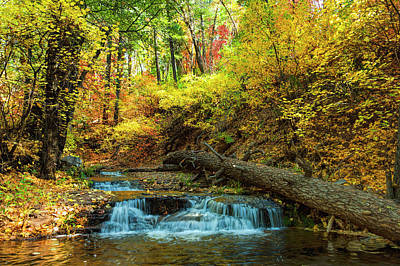 Art Print featuring the photograph Autumn Waterfall by Anthony Citro