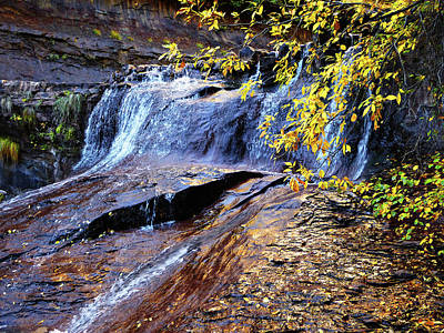 Photograph - Autumn Waterfall With Golden Leaves, Subway by Alan Socolik