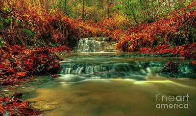 Photograph - Autumn Waterfall by Lena Auxier