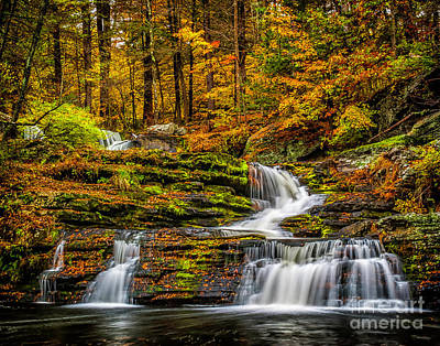 Photograph - Autumn Waterfall by Nick Zelinsky