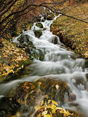 Photograph - Autumn Waterfall by Scott Read
