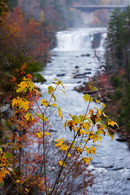 Photograph - Autumn Waters by Parker Cunningham