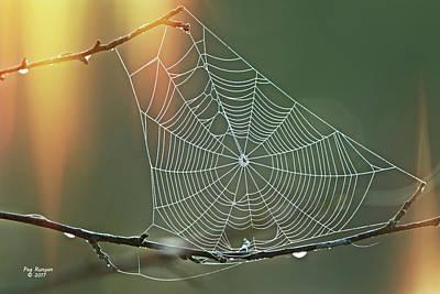 Photograph - Autumn Web by Peg Runyan
