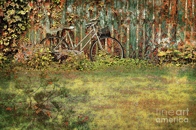 Photograph - Autumn Wheels by John Anderson