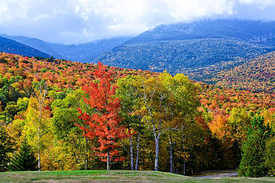 Photograph - Autumn White Mountains Nh by Michael Hubley