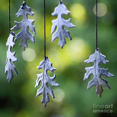 Wind Chimes Photograph - Autumn Wind Chimes by Patrick M Lynch