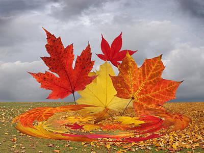 Photograph - Autumn Winds by Gill Billington
