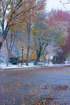 Autumn Winter Street Light Color Art Print by James BO  Insogna