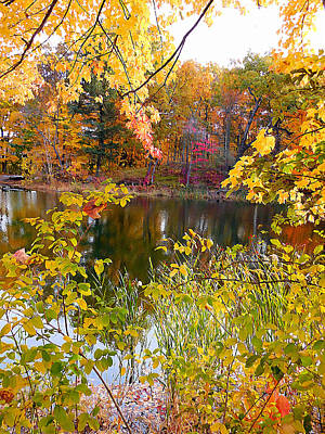 Autumn With Colorful Foliage 7 Art Print