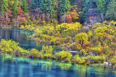 Photograph - Autumn Wonderland by Midori Chan