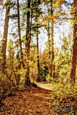 Vintage Pink Cadillac - Autumn Wood Lane by Victor K