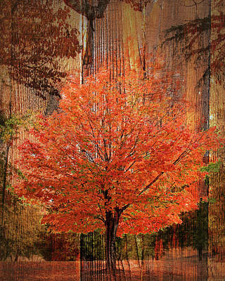 Photograph - Autumn Wood by Larry Bishop