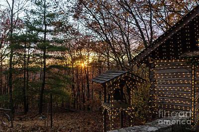 Photograph - Autumn Woods Sunset by Jennifer White