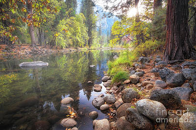 Photograph - Autumn, Yosemite Valley by Anthony Michael Bonafede