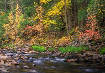 Photograph - Autumn. Yosemite Valley by Tom Kidd