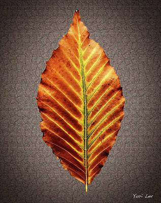 Photograph - Autumnal Avatar by Yuri Lev