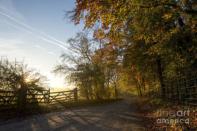 Leaves Changing Photograph - Autumnal Cotswold Morning by Tim Gainey