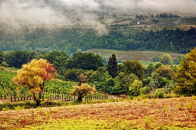 Photograph - Autumnal Hills by Silvia Ganora