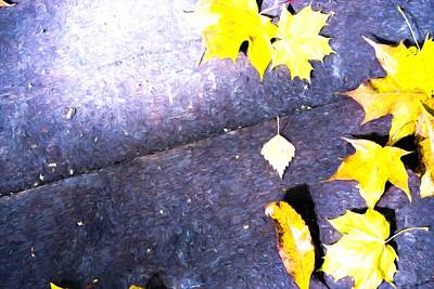 Photograph - Autumnal Leaves On Wooden Planks by John Williams