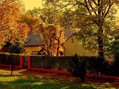 Photograph - Light Of Autumn by Henryk Gorecki