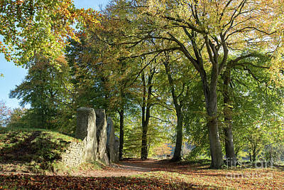 Photograph - Autumnal Long Barrow by Tim Gainey