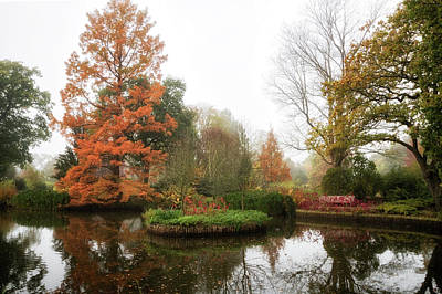 Photograph - Autumnal Mists 2 by Shirley Mitchell