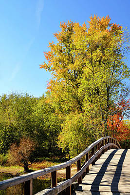 Autumnal North Bridge Art Print