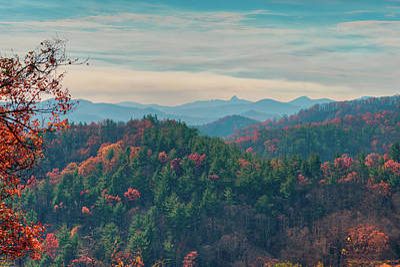 Photograph - Autumnal North Carolina by Ray Devlin