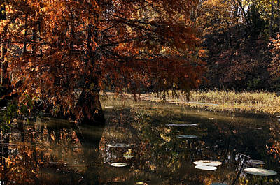 Art Print featuring the photograph Autumnal Solace At Lake Murray by Tamyra Ayles