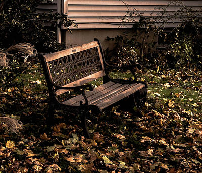 Photograph - Autumnal Solace by Leon deVose