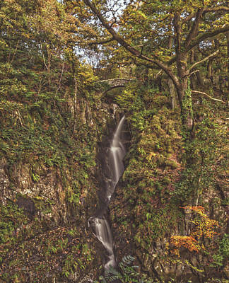 Aira Force Wall Art - Photograph - Autumnal Waterfall. by Angela Aird