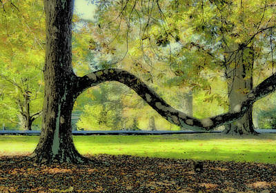 Photograph - Autumns Bench by JAMART Photography
