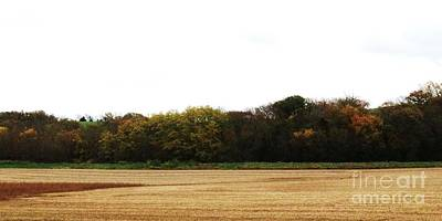 Photograph - Autumn's Blanket by J L Zarek