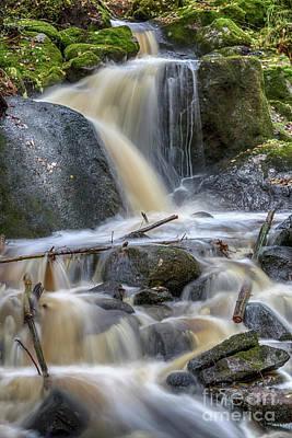 Moss Photograph - Autumn's Creek by Veikko Suikkanen