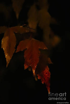 Photograph - Autumn's Darker Side by Susan Herber