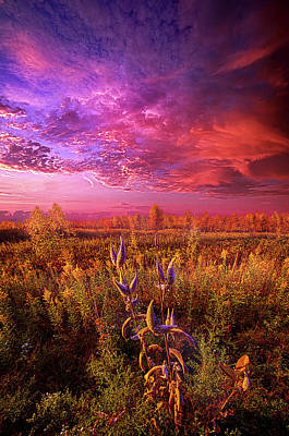 Photograph - Autumn's Faint Whisper by Phil Koch