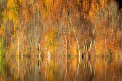 Photograph - Autumns Final Palette by Everet Regal