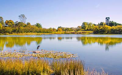 Photograph - Autumns Garden Landscape by Julie Palencia