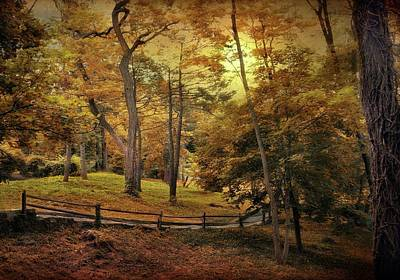 Photograph - Autumn's Golden Trail by Jessica Jenney