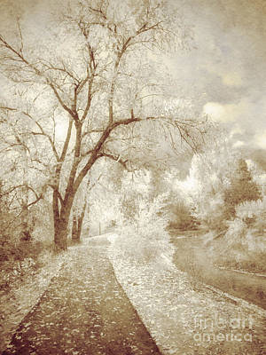 Photograph - Autumn's Last Breath by Tara Turner