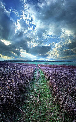 Unity Photograph - Autumn's Passage by Phil Koch