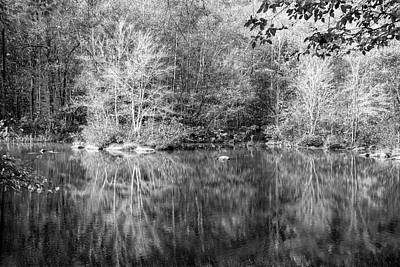 Photograph - Autumn's Peak In Black And White by Debra and Dave Vanderlaan